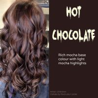 17 Best ideas about Dark Hair Highlights on Pinterest ...