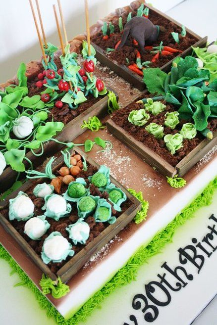 25 Best Ideas About Vegetable Garden Cake On Pinterest Garden