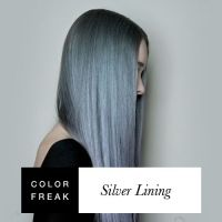 Black Hair With Silver Linings Dark Brown Hairs Of Silver ...