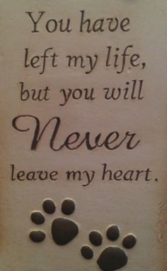 #Love your #dog