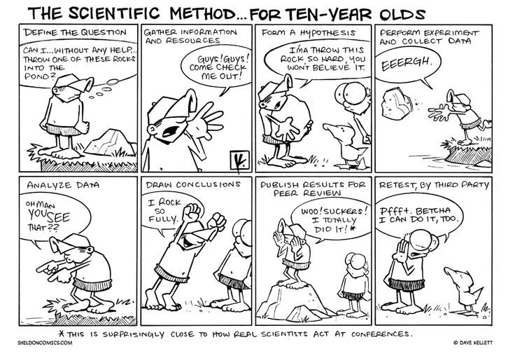 85 best images about Scientific Method, lab and science