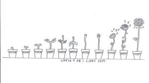 aesthetic drawings indie doodles grunge drawing doodle simple plants heart google plant clipart favim