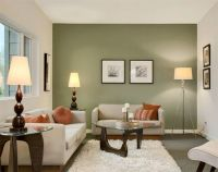 Olive Green Paint | www.pixshark.com - Images Galleries ...