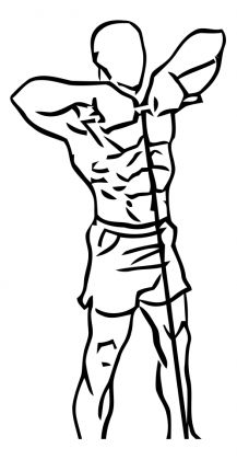 1000+ ideas about Cable Back Exercises on Pinterest