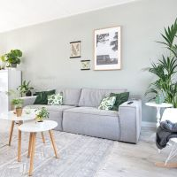 Best 25+ Living room green ideas only on Pinterest