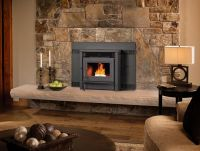 17 Best ideas about Pellet Fireplace on Pinterest ...