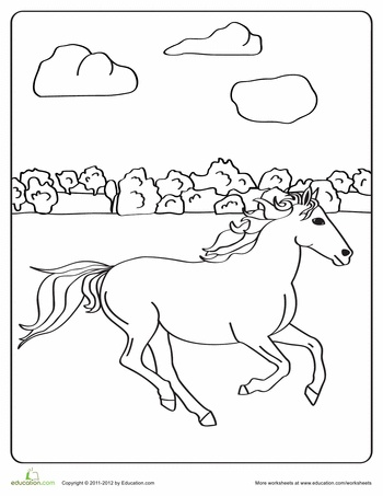 10 best images about Horse Worksheets on Pinterest
