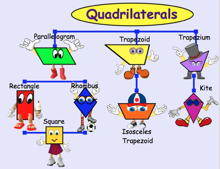 There Are Lots Of Pins About Quadrilaterals Family Tree