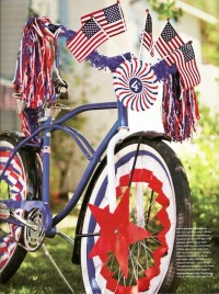 14 best images about 4th of July Bike and Stroller