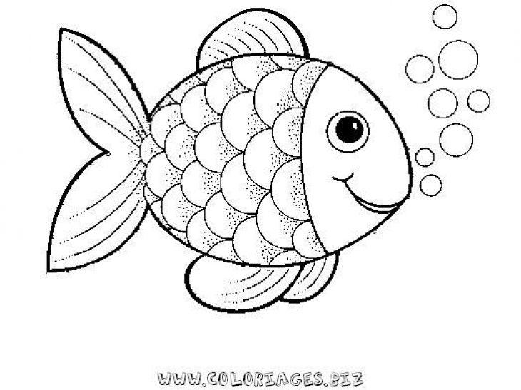 Rainbow Fish Preschool Templates Sketch Coloring Page