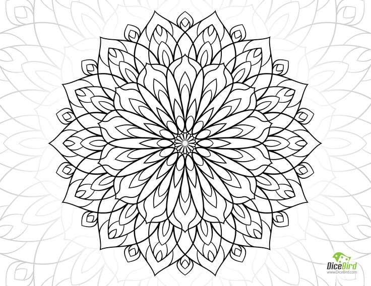 2367 best images about flower coloring on Pinterest