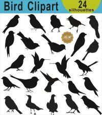 25+ best ideas about Bird clipart on Pinterest | Bird ...