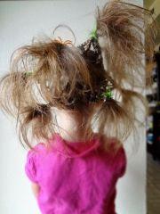 bowsweet tuesday tips crazy hair