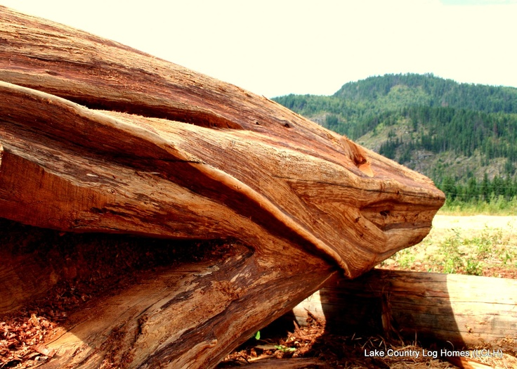 17 Best images about Western Red Cedar Handcrafted Log