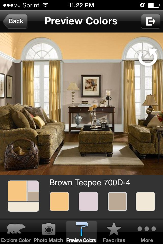 Behr Paint Color Brown Teepee and Jackfruit new master