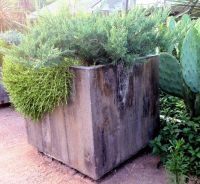 17 Best ideas about Large Concrete Planters on Pinterest