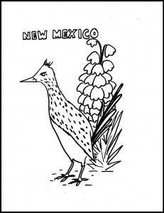 51 best images about New Mexico Unit on Pinterest