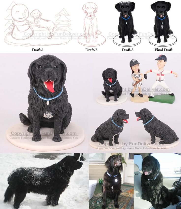 Dog Cake Toppers Dog Cakes Pinterest Funny