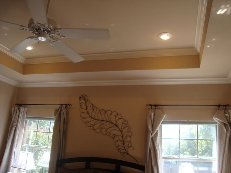 1000+ ideas about Painted Tray Ceilings on Pinterest