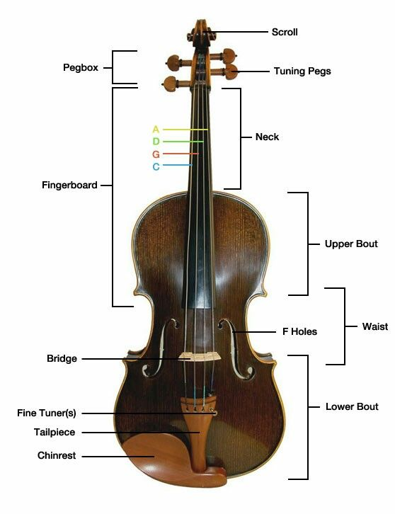 Violin Finger Positions Chart Furthermore Violin Bow Parts Diagram