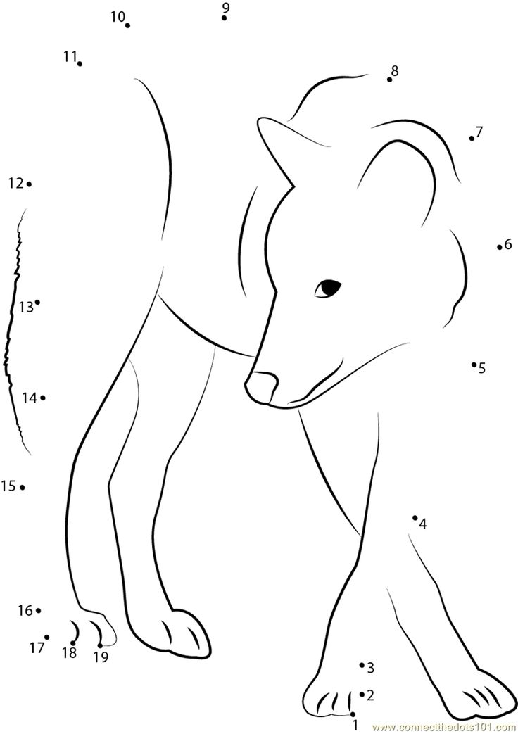 1000+ images about dot to dot and colour by number