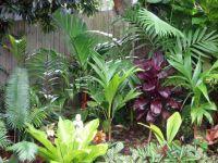 119 best images about Garden on Pinterest | Agaves, Garden ...