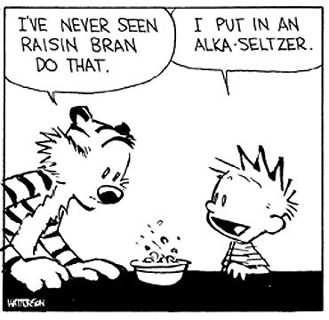 1000+ images about Calvin and Hobbes comic philosophy on