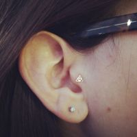 25+ Best Ideas about Tragus on Pinterest