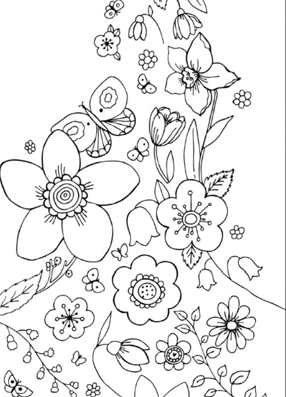 17 Best images about Coloring pages for students on