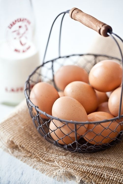 Best 25 Egg basket ideas on Pinterest  Easter egg basket