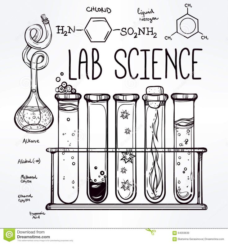 1581 best images about Science on Pinterest
