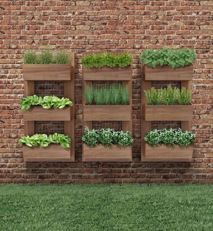 25 Best Ideas About Vertical Garden Wall On Pinterest Wall