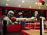 1000+ images about Fitness Center Murals and Interior