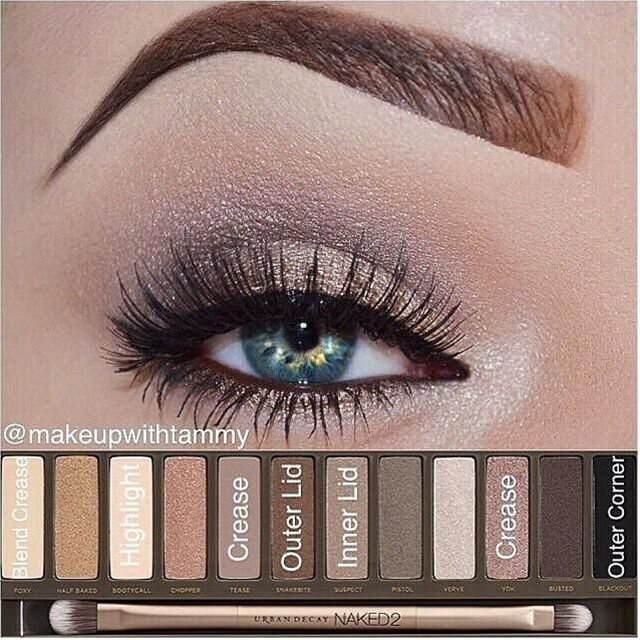 Color placement using the urban decay cosmetics naked 2 palette