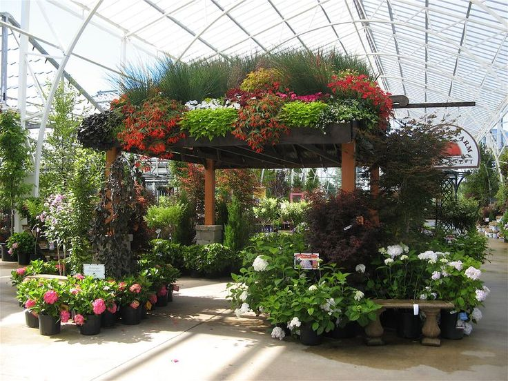 Best 25 Garden Center Displays Ideas On Pinterest Retail