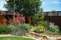 1000+ ideas about Texas Landscaping on Pinterest | South ...