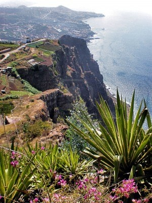 17 Best Ideas About Madeira On Pinterest Portugal