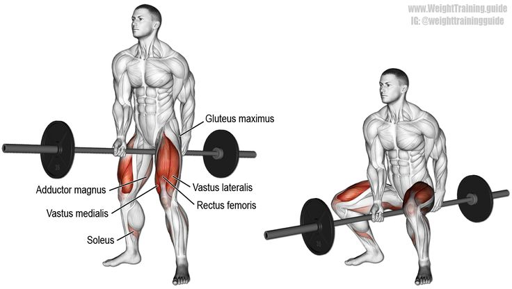 Jefferson squat. A compound exercise. Target muscles