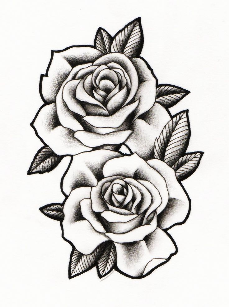Best 25+ Two Roses Tattoo Ideas On Pinterest
