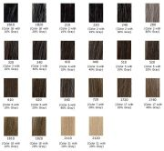 gray hair color shades