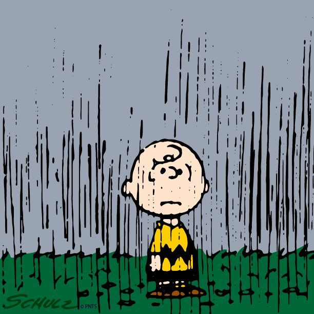 367 Best Images About Charles M Schulz Seasons On