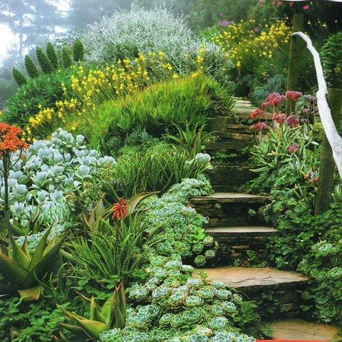 25 Best Ideas About Landscaping A Hill On Pinterest Sloped Yard