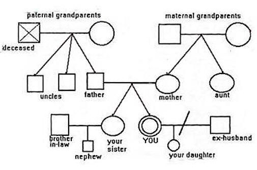 78 Best images about Family genogram on Pinterest