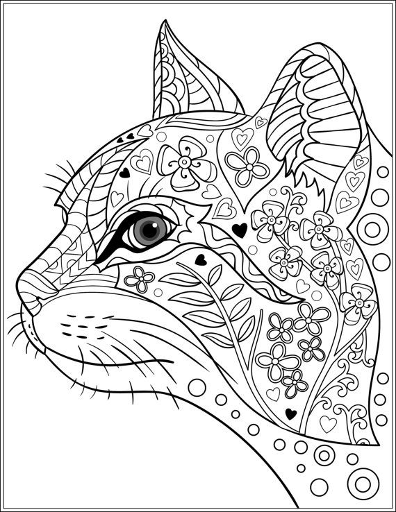 713 best images about Doodle Art with Cats on Pinterest