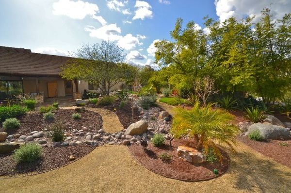 affordable drought tolerant landscaping