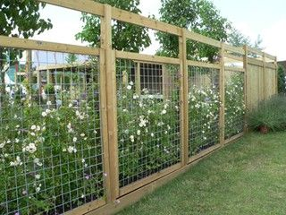 25 Best Ideas About Deer Fence On Pinterest Fence Garden Small