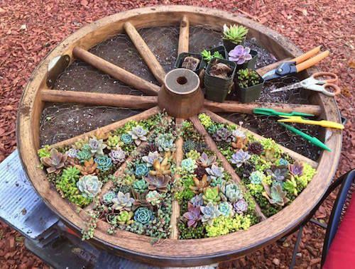 25 Best Ideas About Wagon Wheel Garden On Pinterest Wagon
