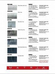 silver hair formulas matrix