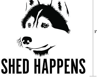 Best Dog Car Harness Best Dog Travel Harness Wiring