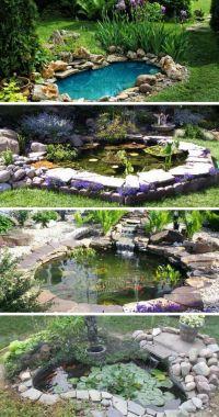 Best 20+ Goldfish pond ideas on Pinterest | Water pond ...